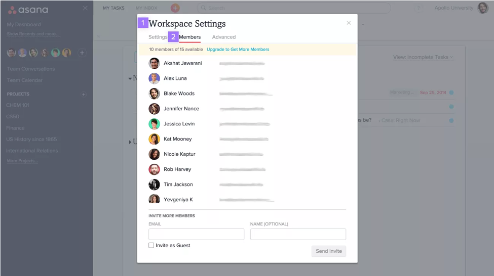 Asana Workspace Settings