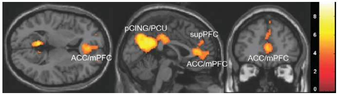 brain westen science of persuasion