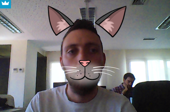 best video conferencing appearin kitty cat