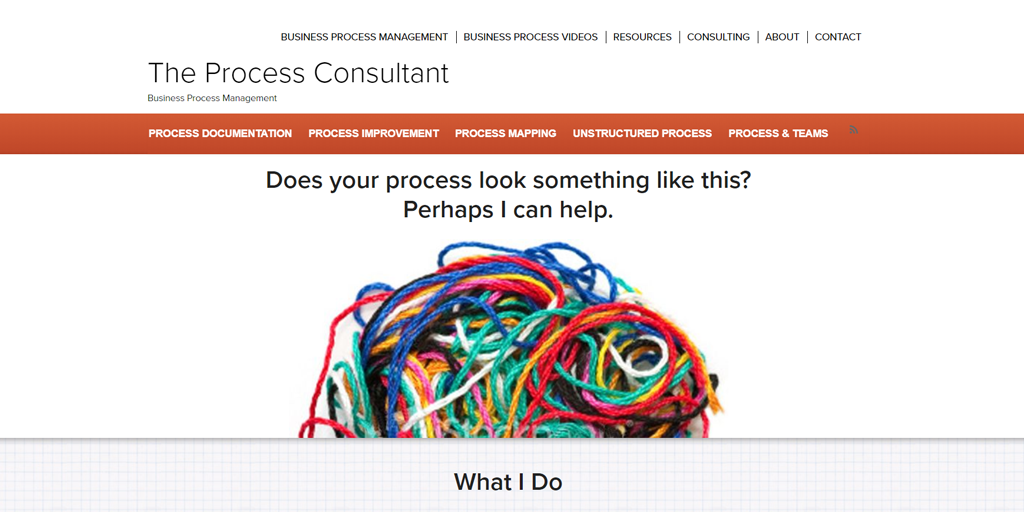 the process consultant