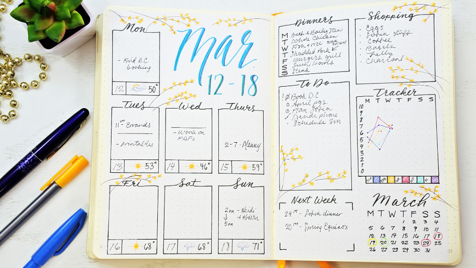 bullet journal ideas example