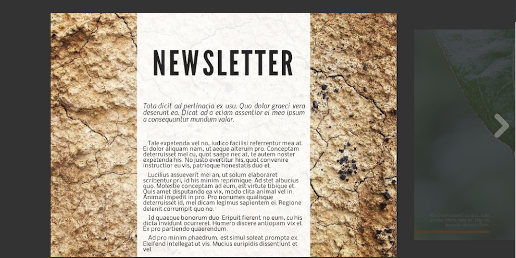 Newsletter templates: newsletter template 17