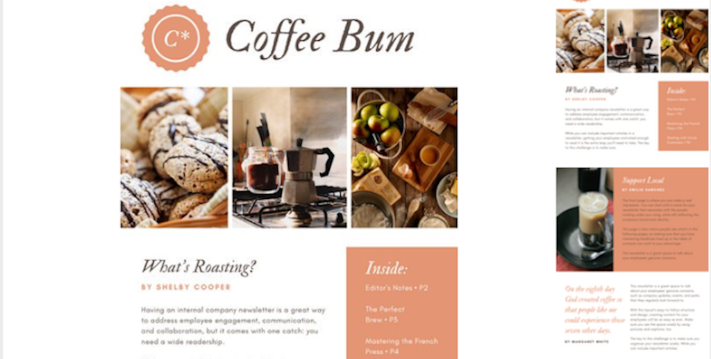 Newsletter templates: newsletter template 19