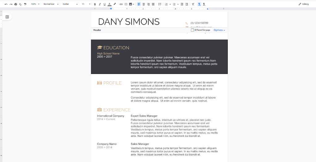 Google Docs Templates - Light and Dark Resume