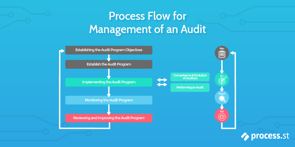 Operational Audit, Audit process