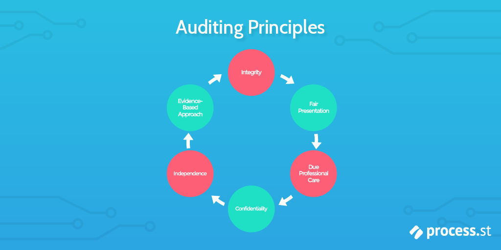 Operational Audit, Auditing Principles