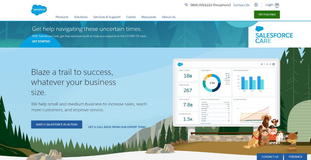 Customer success for SaaS - salesforce