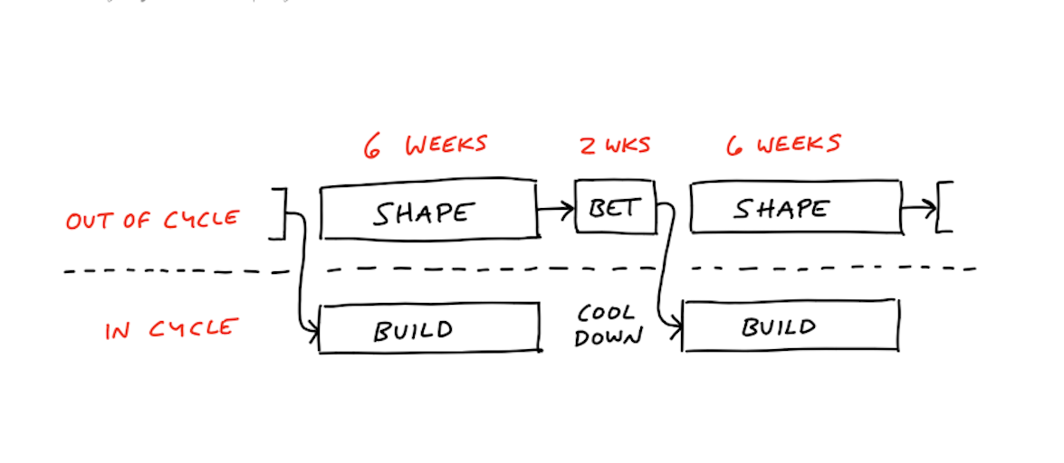Shape Up Cycle