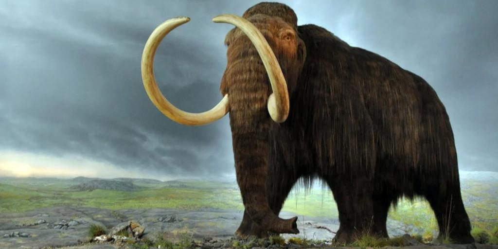 big-data-people-analytics-woolly-mammoth